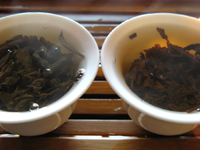 7542七子餅茶プーアル茶3種